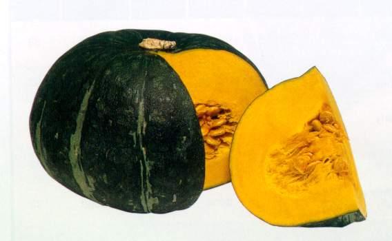 Asian Pumpkin 22